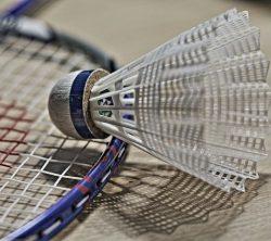 Collège de Rosemont - badminton