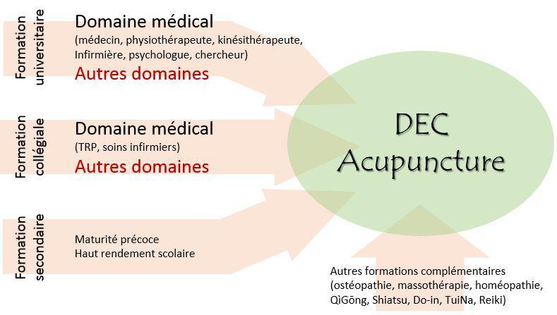 Collège de Rosemont - Acupuncture